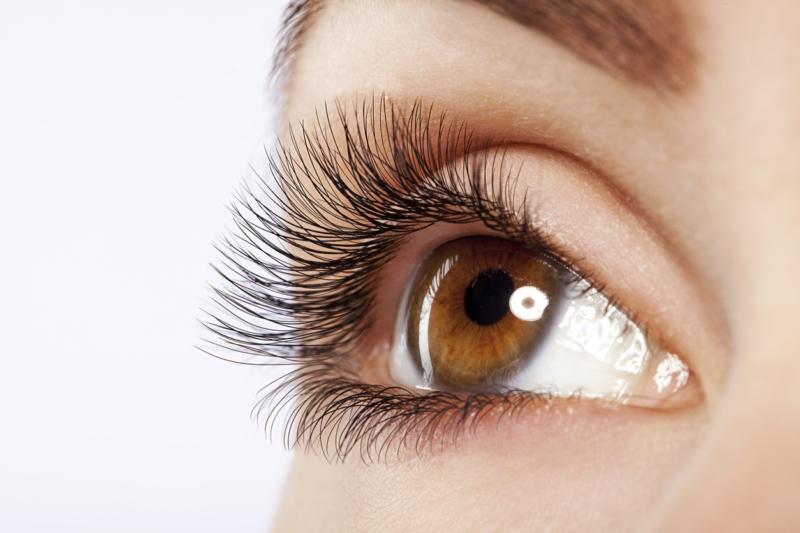 Eyelashes Course Model